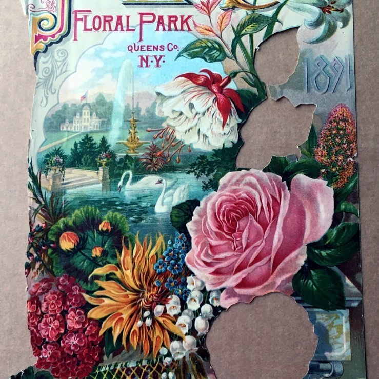 May flowers, circa 1891. The cover of John Lewis Childs' 1891 catalogue of