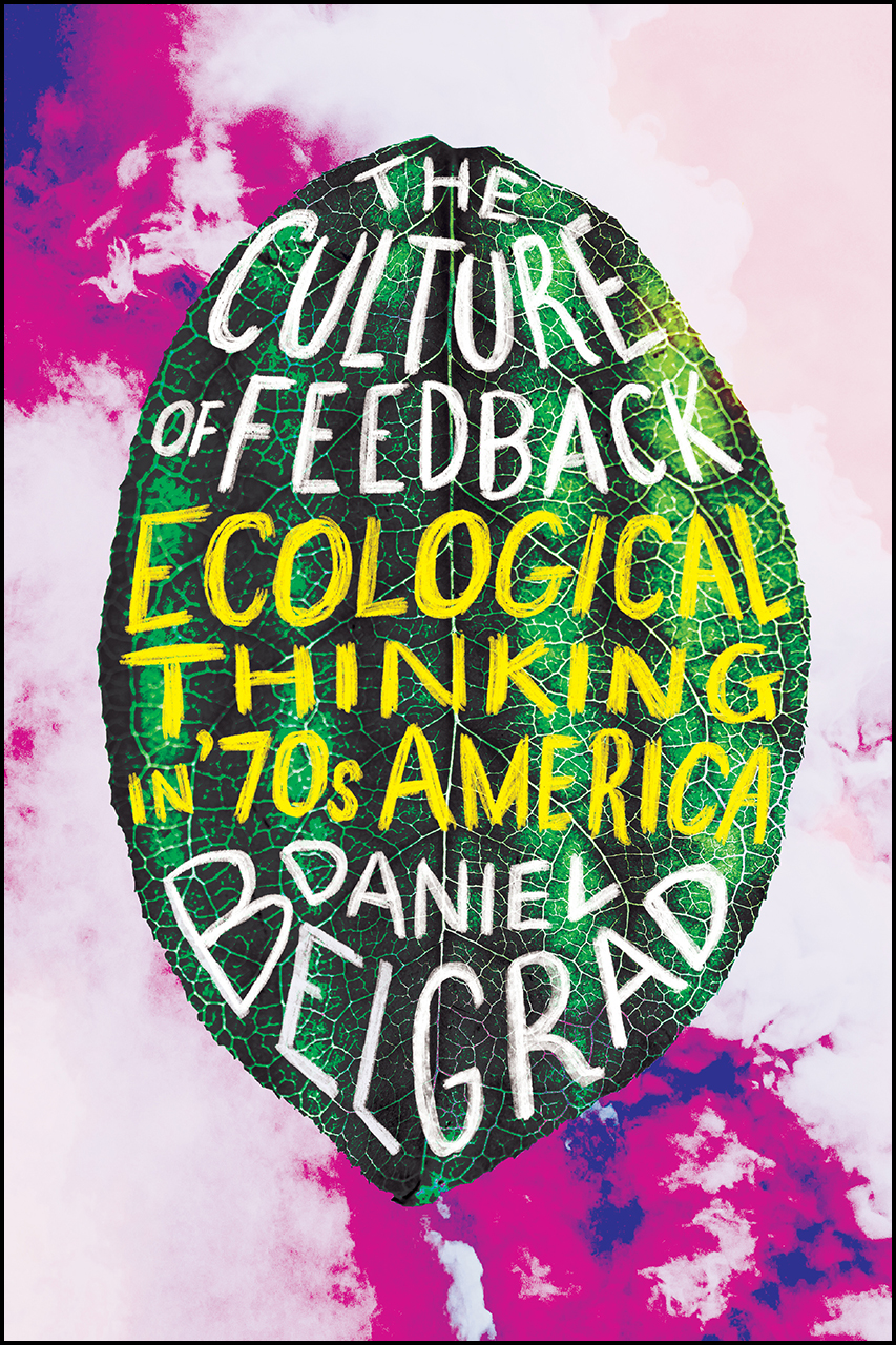 The Culture of Feedback: Ecological Thinking by Daniel Belgrad [book cover]